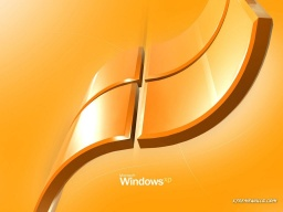 windows-058-01.jpg